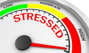 Extreme stress levels can cause tooth pain.
